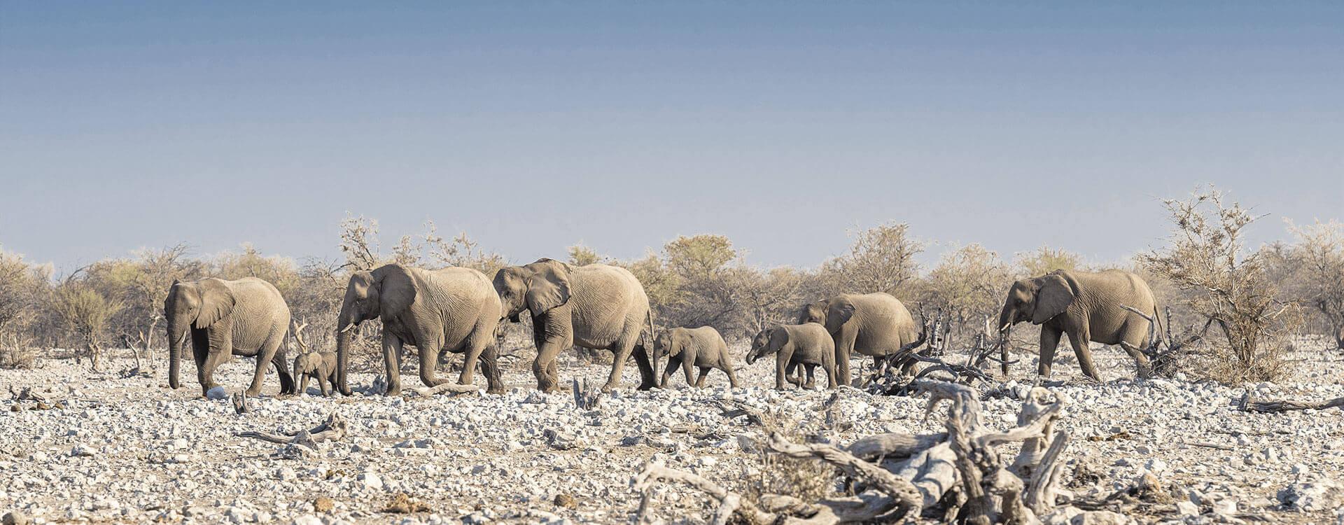 Namibia Gruppenreise