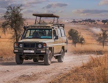 begleitete Safarireise Tansania