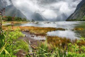 Milford Reise Neuseeland
