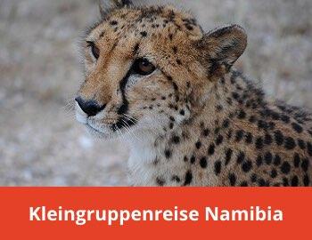 Kleingruppenreise Namibia Winhoek