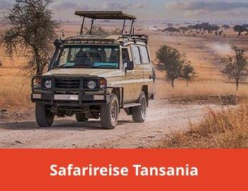 Safarireise Tansania