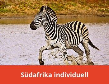 Südafrika Reise individuell